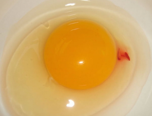 Is it Safe to Eat a Bloody Egg?
