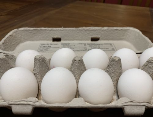 Why are Eggs Stored Pointy End Down?