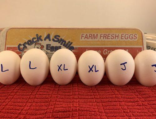Egg Sizing