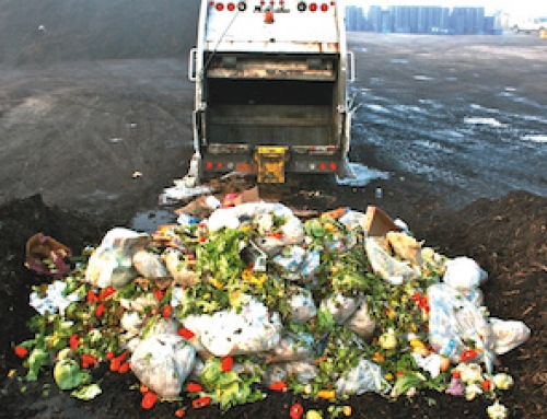 Food Waste – Who Cares?