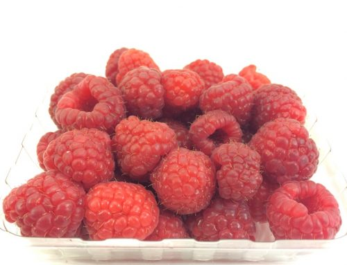 Best Way to Store Raspberries