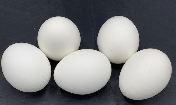 Eggs How Long Do Eggs Last Shelf Life Storage Expiration