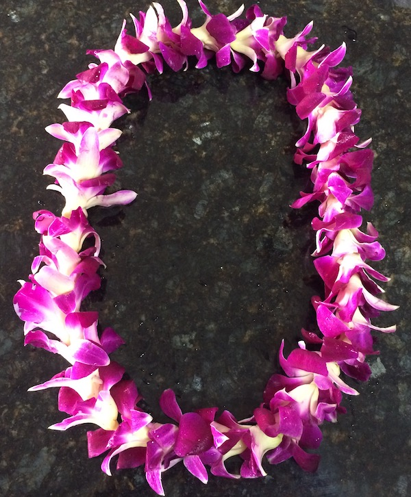 How to Store a Lei